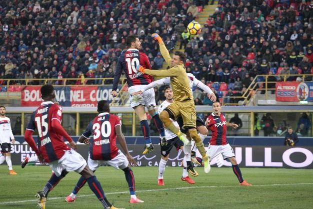 Cross di Masina e colpo di testa di Destro in gol: il pareggio del Bologna (foto Ansa)