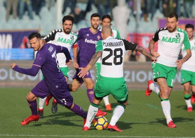 Fiorentina- Sassuolo (Foto Germogli)