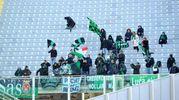 I tifosi del Sassuolo allo stadio Artemio Franchi di Firenze (foto LaPresse)