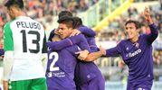 La gioia della Fiorentina e la delusione di Peluso (foto LaPresse)