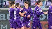 Fiorentina-Sassuolo: la gioia di Chiesa(Foto Germogli)