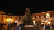 Alla suggestiva rappresentazione fa da corollario l'albero di Natale installato in piazza Pisacane (foto Ravaglia)