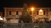 L'albero è stato per la prima volta addobbato dai bimbi delle elementari (foto Ravaglia)