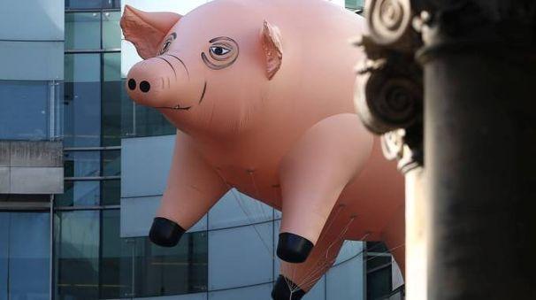 Il grande Waters sarà a Lucca sotto le mura. Il maiale è ricomparso a Londra nel 50° anniversario dei Pink Floyd