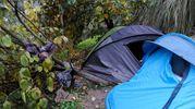 Le tende tra il verde (foto Calavita)