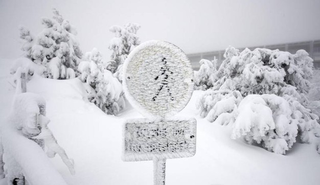 Forti nevicate vicino Achern, Germania (foto Ansa)