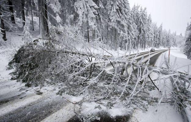 Disagi a Achern sulla stradale della Foresta Nera ( foto Ansa)