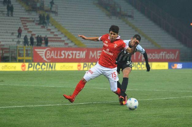 Perugia-Ascoli 1-0, il Picchio è ultimo in classifica (foto LaPresse)