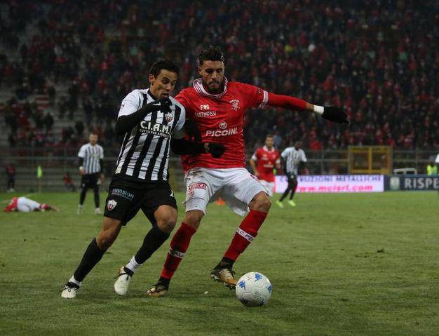 Perugia-Ascoli 1-0, le foto della partita (Crocchioni)