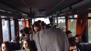 L'autobus sostitutivo stipato, studenti ammassati