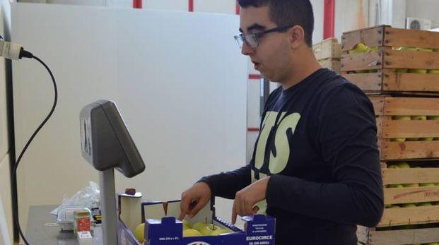 Un partecipante al progetto ConLab