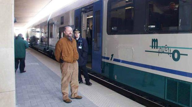 Treni fermi (foto repertorio)
