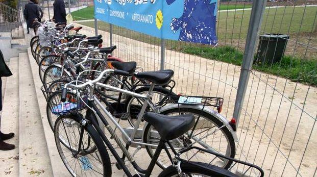 Biciclette all'asta (foto repertorio)
