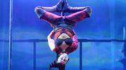 Lo spettacolo di Le Cirque World's Top Performers (FotoSchicchi)