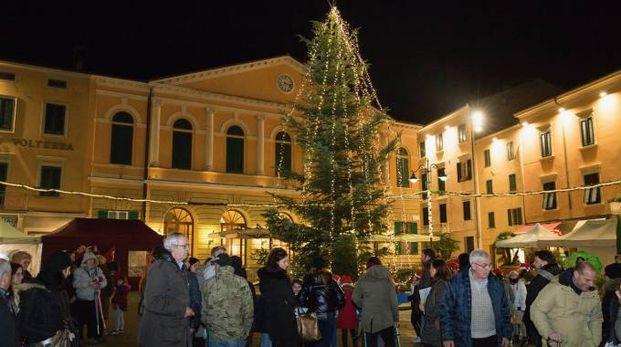 Acceso l'albero a Cascina (Foto Marco Marchetti)
