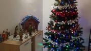 L'albero e il presepe di Silvia, Leonardo, Giulia e Alessio di Prato
