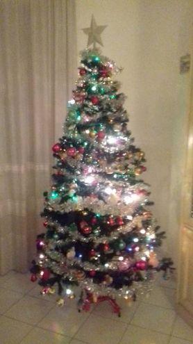 L'albero di Nicole Pasqualetti di Pontedera