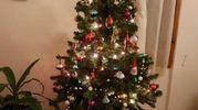 Auguri per un Natale di serenità  e pace per tutti...