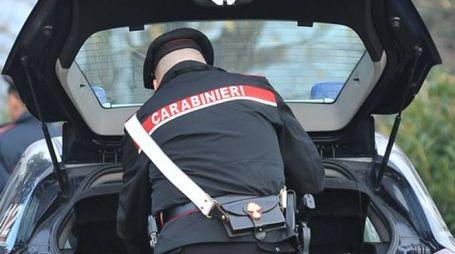 Accertamenti fatti dai carabinieri di Apecchio (PU)