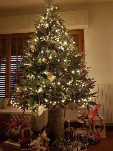 L'albero di Gaia e Tania