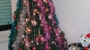 L'albero di Giuseppe Vitiello di Scandicci