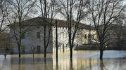 Lentigione dopo l'alluvione del 12 dicembre 2017 (Foto Artioli)
