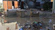 Dopo l'alluvione (foto Artioli)
