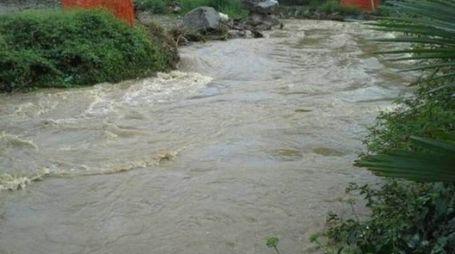 Il fiume Olona in piena