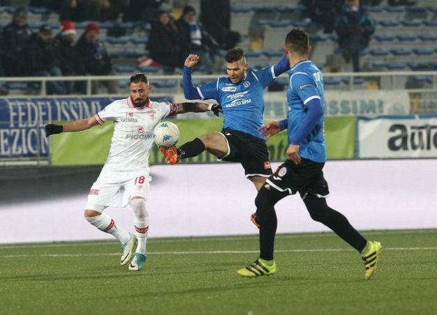 Novara-Perugia, le foto della partita (LaPresse)