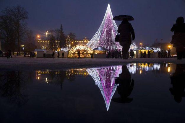 L'albero illuminato della cattedrale di Vilnius, Lithuania (Ansa)