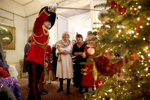 Londra, la duchessa Camilla accanto all'albero della Clarence House (Lapresse)