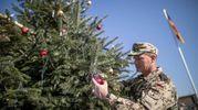 Un militare tedesco decora l'albero in Afghanistan (Ansa)