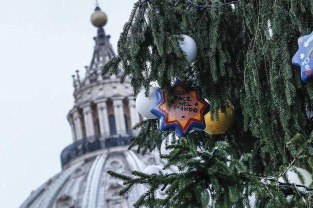 Roma, l'albero in piazza San Pietro (Ansa)