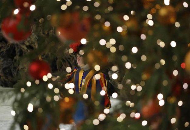 Una guardia svizzera occhieggia tra i rami dell'albero di piazza San Pietro (Ansa)