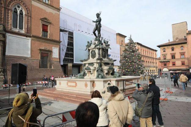 Nettuno e albero di Natale in piazza Nettuno (foto Schicchi)