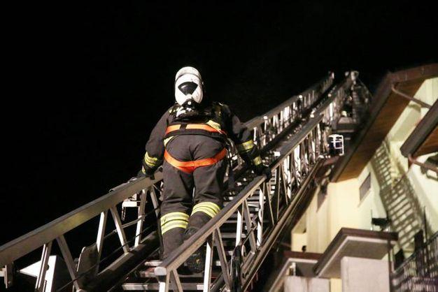 I vigili del fuoco  (Foto Ravaglia)
