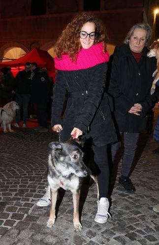 In tanti hanno portato un barattolo di carne o altro cibo confezionato per i cani più sfortunati (FotoPrint)