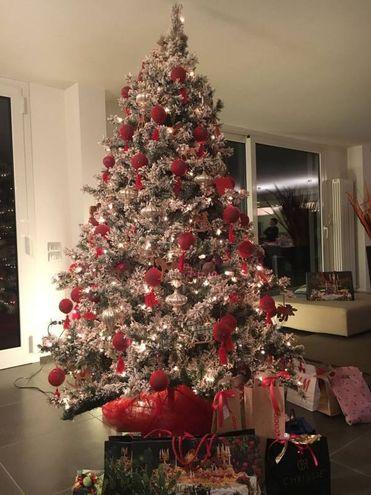 L'albero di Mariateresa