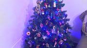 L'albero di Natale di Alberto Nave - Modena