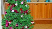L'albero di Natale di Francesco (Chicco) anni 2, foto della nonna Carla B.