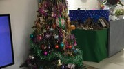 L'albero di Natale di Raffaella