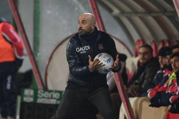 Carpi-Bari, mister Calabro (foto LaPresse)