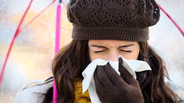 Influenza 2017, foto d'archivio Dire