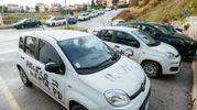 Imbrattate dai vandali tre auto in uso alla Regione Marche (foto Zeppilli)