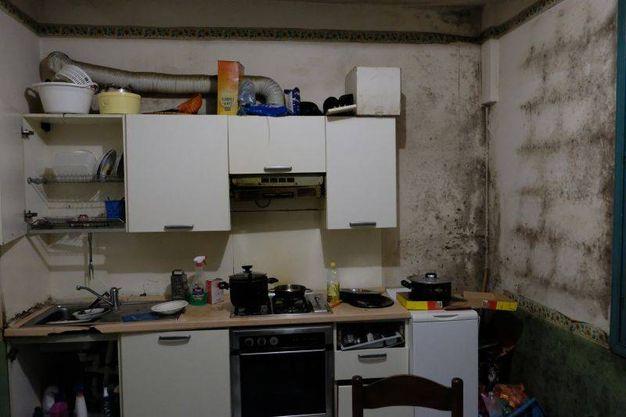 I topi dentro la casa dei profughi gestita dalla cooperativa l'Angolo