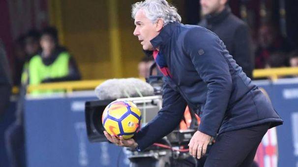 Bologna-Udinese 1-2, Roberto Donadoni (FotoSchicchi)
