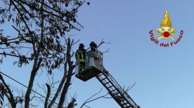 In azione i vigili del fuoco