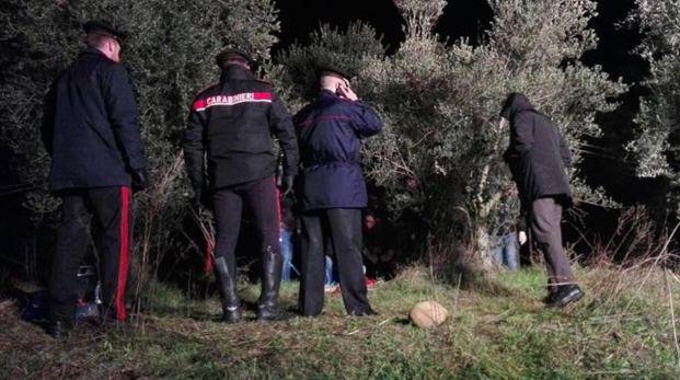 La campagna di Valeggio sul Mincio dove è stata trovata la donna fatta a pezzi (Ansa)