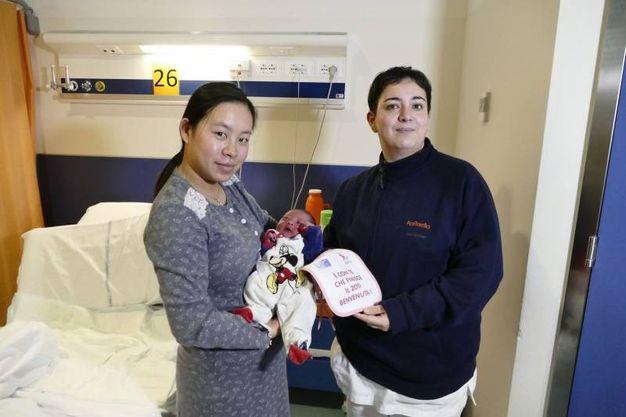 Tiffany Mao è l'ultima nata a Prato nel 2017 (Attalmi)