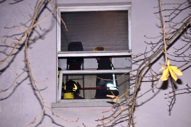 L'intervento dei vigili del fuoco (Foto Fantini)